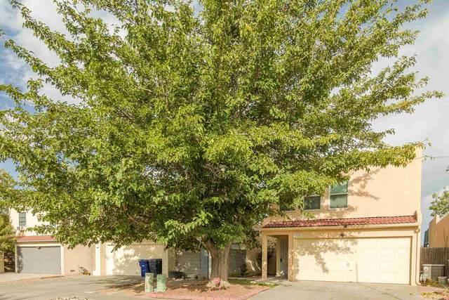 7320 Armand Rd, Albuquerque, NM 87120 (MLS #202004028) :: Summit Group Real Estate Professionals