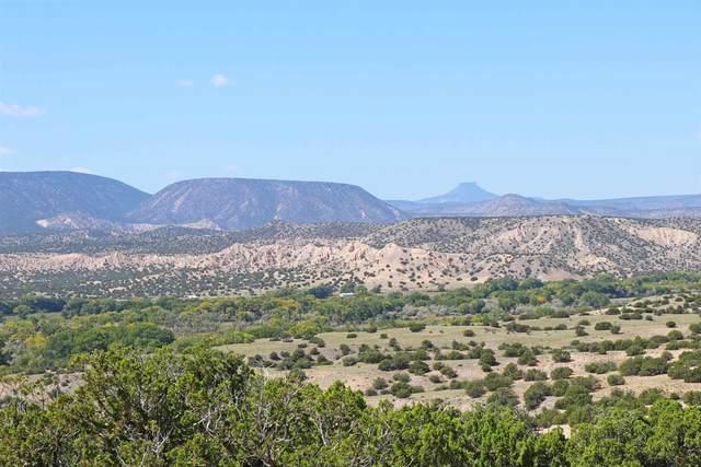 Lot 12 Vista De Pedernal, Medanales, NM 87548 (MLS #202004031) :: Stephanie Hamilton Real Estate