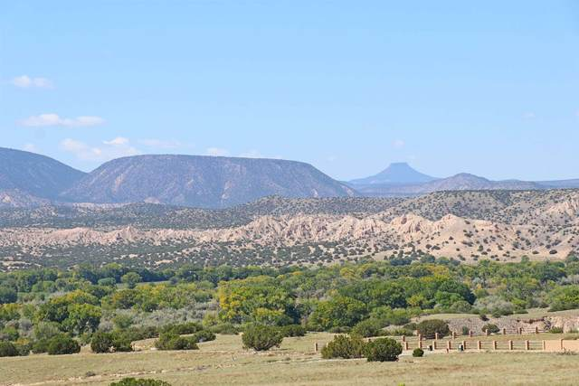 Lot 7 Vista De Pedernal, Medanales, NM 87548 (MLS #202004034) :: Berkshire Hathaway HomeServices Santa Fe Real Estate