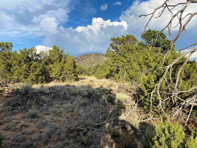 0 Timberwick Rd, Santa Fe, NM 87508 (MLS #202004072) :: Berkshire Hathaway HomeServices Santa Fe Real Estate