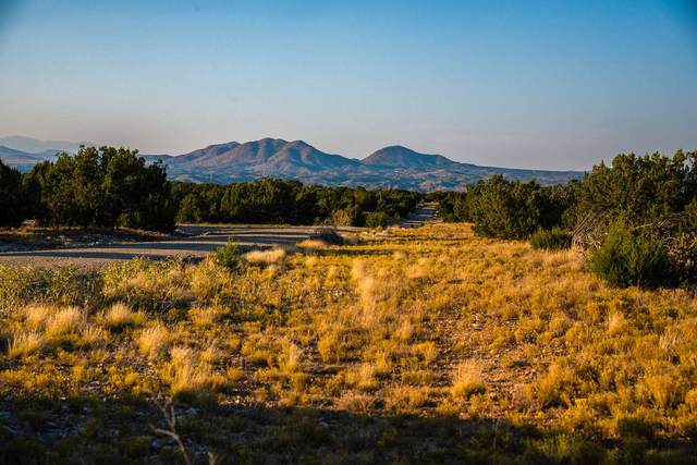 83 Acres Silver Spur Trail, Santa Fe, NM 87010 (MLS #202004087) :: Summit Group Real Estate Professionals