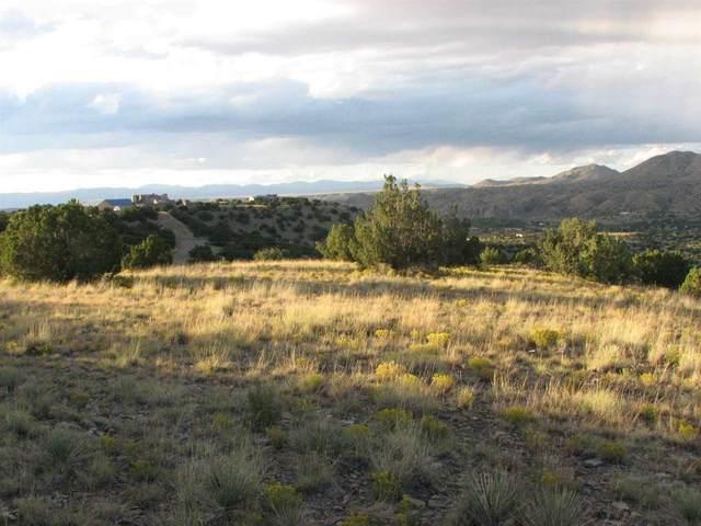107 Goldmine Road, Cerrillos, NM 87010 (MLS #202004090) :: Summit Group Real Estate Professionals