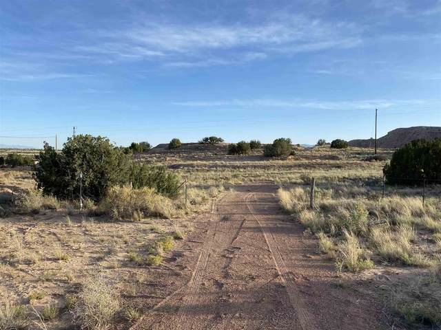 0 TBD Nm 554, Abiquiu, NM 87510 (MLS #202004096) :: Stephanie Hamilton Real Estate