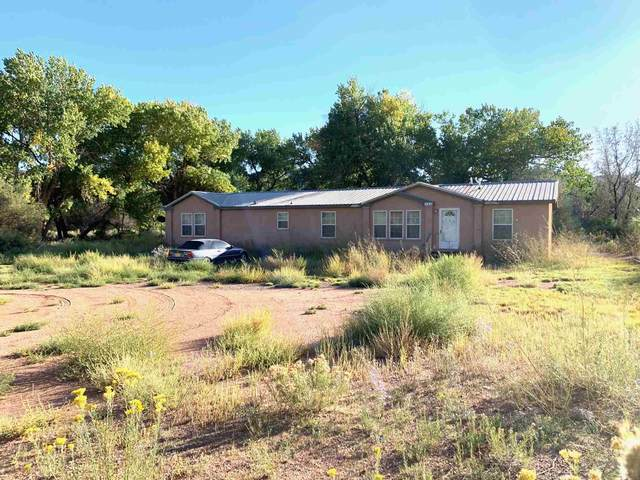 583 County Rd 155, Abiquiu, NM 87510 (MLS #202004106) :: Berkshire Hathaway HomeServices Santa Fe Real Estate