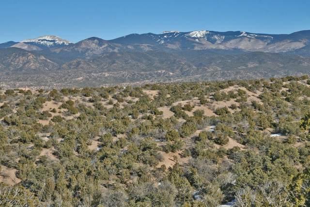 97 Arroyo De Las Cuevas Tr A-2, Santa Fe, NM 87506 (MLS #202004112) :: Summit Group Real Estate Professionals