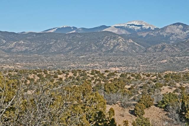 97 Arroyo De Las Cuevas, Santa Fe, NM 87506 (MLS #202004114) :: Neil Lyon Group | Sotheby's International Realty