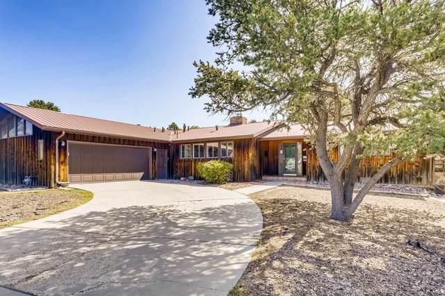 50 Tecolote, Los Alamos, NM 87544 (MLS #202004121) :: Stephanie Hamilton Real Estate