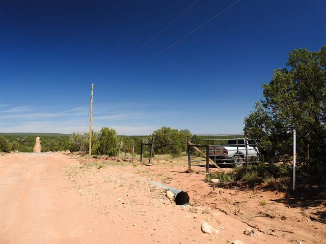 305 Cr B29-A, Villanueva, NM 87583 (MLS #202004137) :: Summit Group Real Estate Professionals