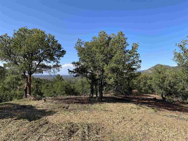 4-B Ponderosa Ridge Lot 1, Santa Fe, NM 87505 (MLS #202004156) :: Summit Group Real Estate Professionals