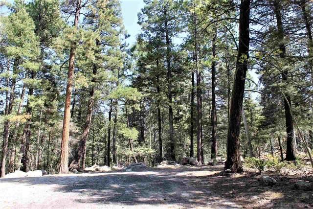 0 Chipmunk Trail, Jemez Springs, NM 87025 (MLS #202004200) :: Summit Group Real Estate Professionals