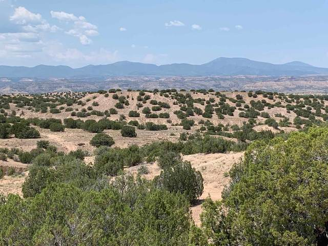5 Nm Sr 502, Pojoaque, NM 87506 (MLS #202004208) :: Stephanie Hamilton Real Estate