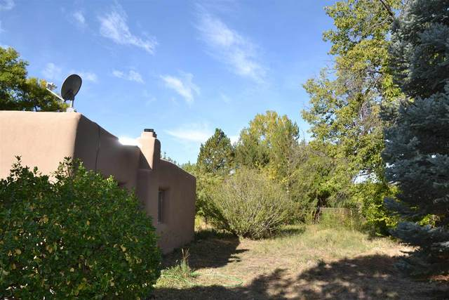 20 Pr Dr 1013A, Alcalde, NM 87511 (MLS #202004231) :: Summit Group Real Estate Professionals