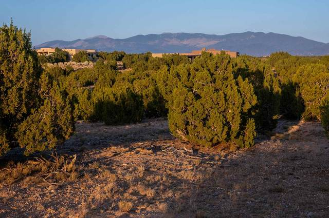 21 Rabbitbrush, Santa Fe, NM 87506 (MLS #202004289) :: The Very Best of Santa Fe