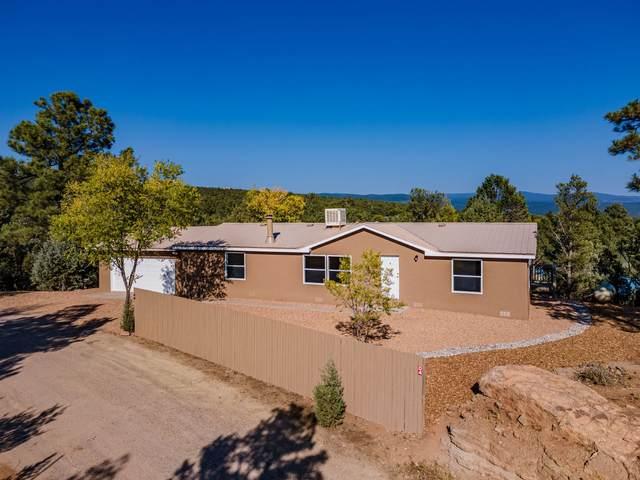 4 Indian View, Glorieta, NM 87535 (MLS #202004292) :: Berkshire Hathaway HomeServices Santa Fe Real Estate