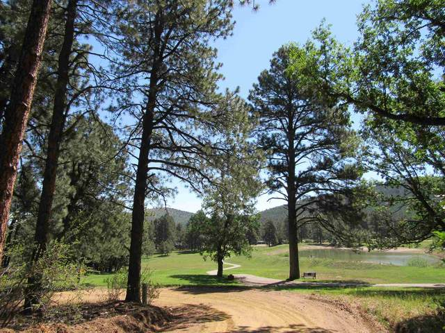 6 & 7 Don Jose Dr, Rociada, NM 87742 (MLS #202004317) :: Summit Group Real Estate Professionals