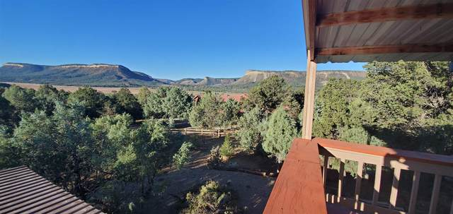 35 Christy Lane, Rutheron, NM 87551 (MLS #202004331) :: The Very Best of Santa Fe