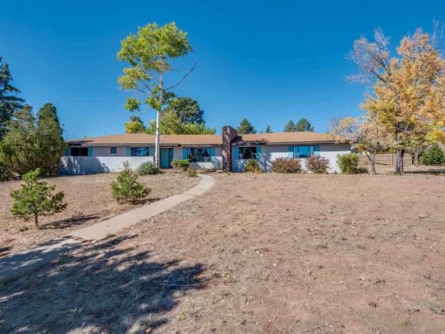 103 Tesuque, Los Alamos, NM 87544 (MLS #202004359) :: Stephanie Hamilton Real Estate