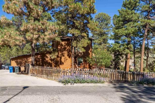 1016 Alamo Road, Los Alamos, NM 87544 (MLS #202004397) :: Stephanie Hamilton Real Estate
