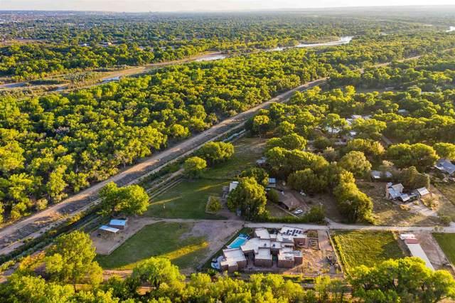 155 Skylark Ln, Corrales, NM 87048 (MLS #202004403) :: Summit Group Real Estate Professionals