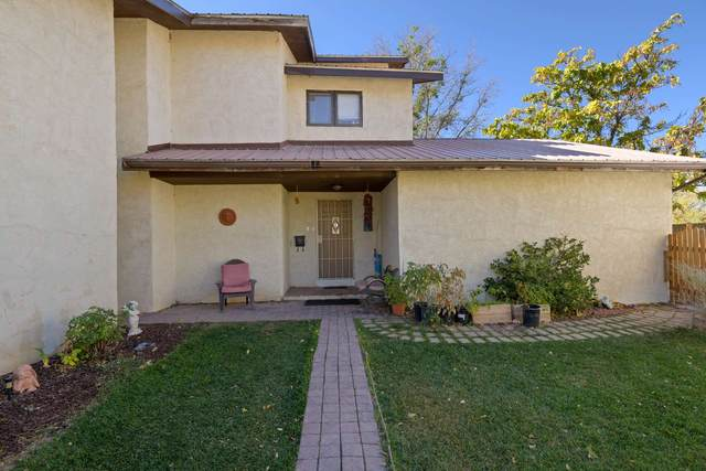 35 Private Drive 1142, Espanola, NM 87532 (MLS #202004437) :: Summit Group Real Estate Professionals
