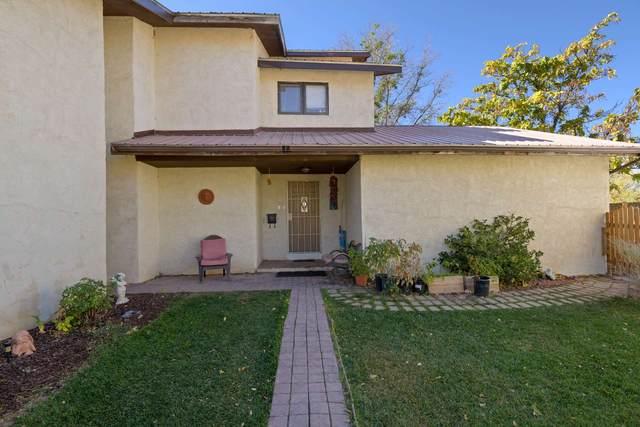 35 Private Drive 1142, Espanola, NM 87532 (MLS #202004437) :: The Very Best of Santa Fe
