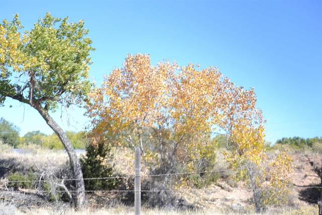 Tract A 9B PLACITA, Espanola, NM 87567 (MLS #202004451) :: The Very Best of Santa Fe