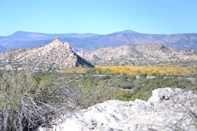Lot 30 Cerrito De Baca, Ojo Caliente, NM 87549 (MLS #202004458) :: The Very Best of Santa Fe
