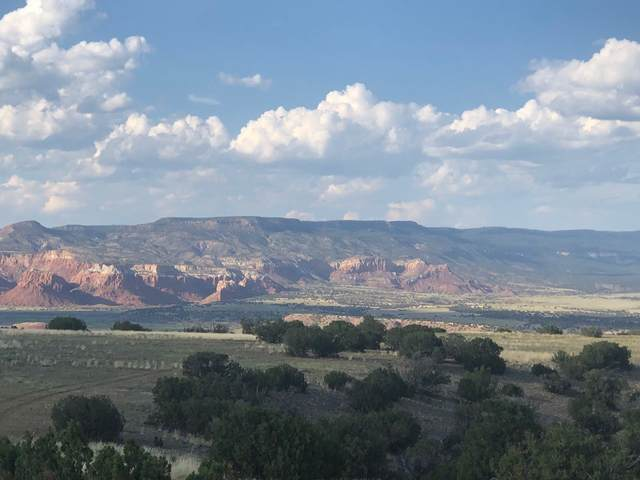 Lot 10 High Mesas At Abiquiu, Youngsville, NM 87064 (MLS #202004484) :: Neil Lyon Group | Sotheby's International Realty
