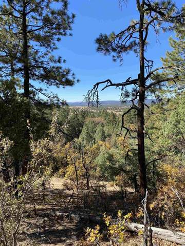 Tract 20 Unit 7, Chama, NM 87520 (MLS #202004493) :: The Very Best of Santa Fe