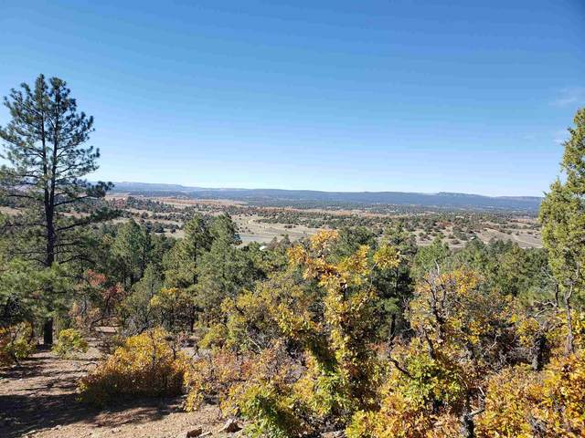 Tract 19 Unit 7, Ponderosa, Chama, NM 87520 (MLS #202004494) :: The Very Best of Santa Fe