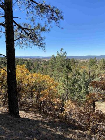 Tracts 19 & 20 Unit 7, Chama, NM 87520 (MLS #202004497) :: The Very Best of Santa Fe