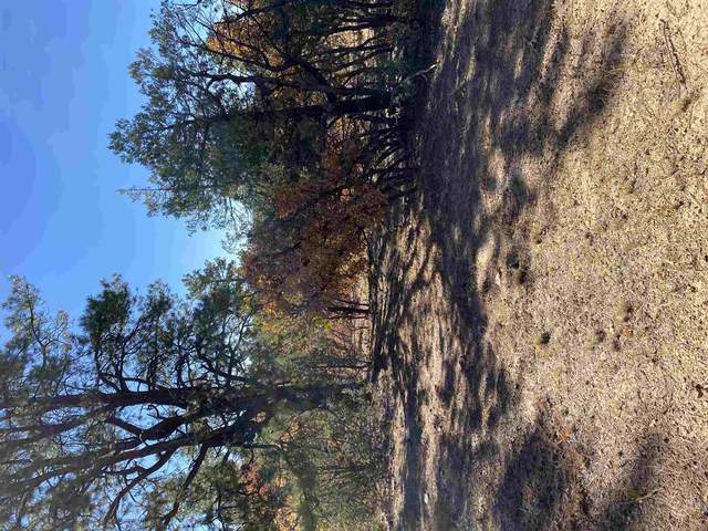 Tract 40 Unit 7, Chama, NM 87520 (MLS #202004504) :: The Very Best of Santa Fe