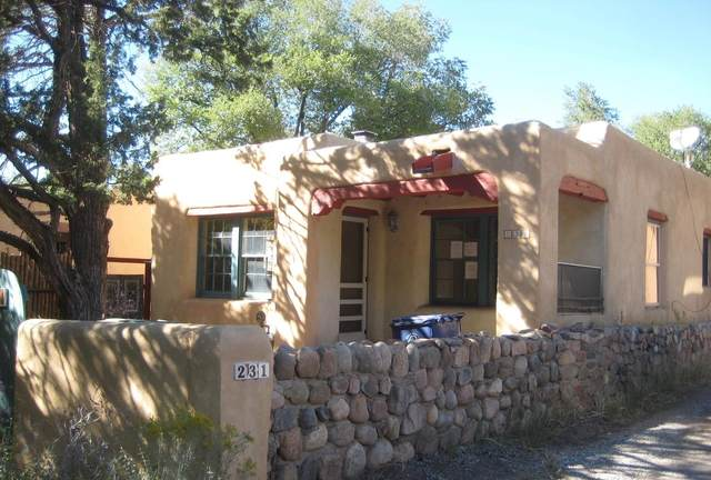 231 Rosario Blvd Unit #2, Santa Fe, NM 87501 (MLS #202004506) :: Summit Group Real Estate Professionals