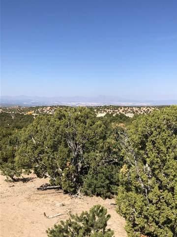 6 Eagle Dancer Court, Lot 2, Santa Fe, NM 87506 (MLS #202004523) :: Berkshire Hathaway HomeServices Santa Fe Real Estate
