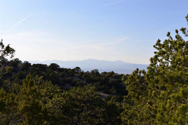 17 Canon Del Cerro, Chimayo, NM 87506 (MLS #202004526) :: Berkshire Hathaway HomeServices Santa Fe Real Estate
