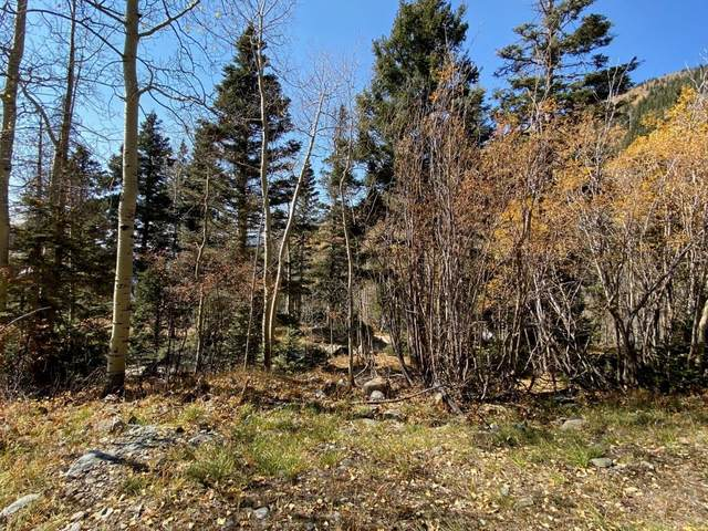 Lot 1-A Snowshoe Rd, Taos Ski Valley, NM 87525 (MLS #202004558) :: Summit Group Real Estate Professionals
