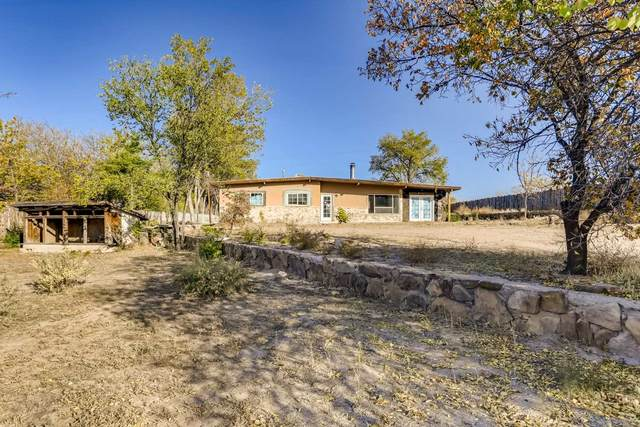 7 County Rd 84G, Santa Fe, NM 87506 (MLS #202004612) :: Summit Group Real Estate Professionals