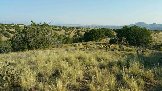 220 Old Windmill Ridge, Cerrillos, NM 87010 (MLS #202004625) :: The Very Best of Santa Fe