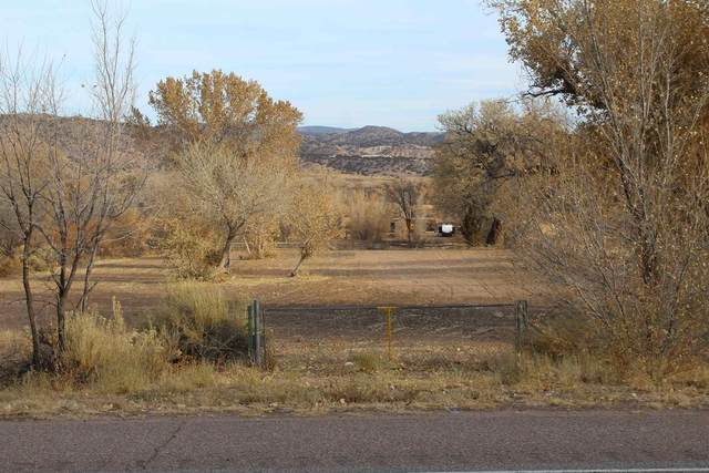 TBD Us Hwy 84, Abiquiu, NM 87532 (MLS #202004644) :: Berkshire Hathaway HomeServices Santa Fe Real Estate