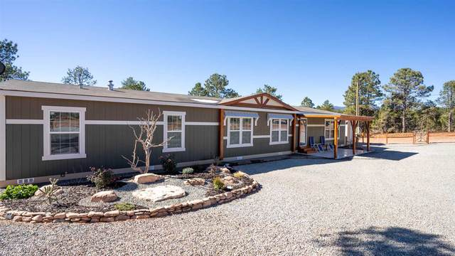 8 Frostway Drive, Pecos, NM 87552 (MLS #202004676) :: Summit Group Real Estate Professionals