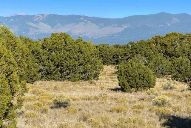 19 Green Meadow Loop, Lot 386, Santa Fe, NM 87506 (MLS #202004708) :: Berkshire Hathaway HomeServices Santa Fe Real Estate