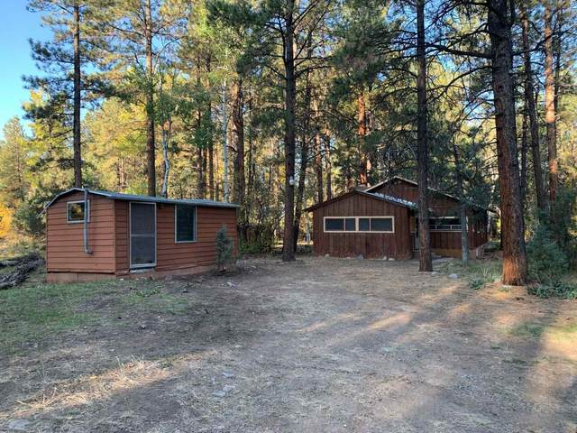 28 Private Drive 1751, Brazos, NM 87520 (MLS #202004748) :: Summit Group Real Estate Professionals