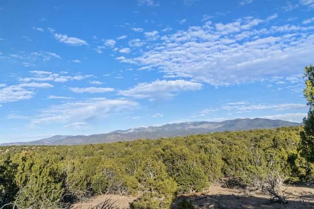 1 Tano Escondido, Santa Fe, NM 87506 (MLS #202004769) :: Neil Lyon Group | Sotheby's International Realty