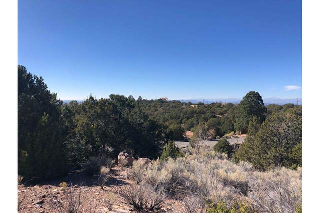 1421 Canada Del Sur, Santa Fe, NM 87501 (MLS #202004828) :: Summit Group Real Estate Professionals