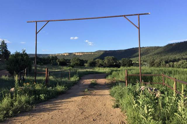 0 Magic Canyon Park Ranch, Guadalupita, NM 87722 (MLS #202004834) :: Stephanie Hamilton Real Estate