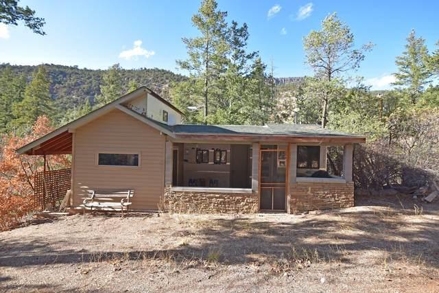 192 River Dr, Jemez Springs, NM 87025 (MLS #202004875) :: Stephanie Hamilton Real Estate