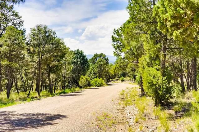 Lot 5 White Hawk, Pecos, NM 87115 (MLS #202004909) :: Neil Lyon Group | Sotheby's International Realty
