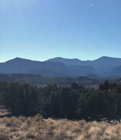 TBD Roadrunner Lane, Ojo Caliente, NM 87549 (MLS #202004913) :: Neil Lyon Group | Sotheby's International Realty