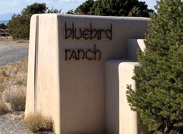 2 Bluebird Lane, Santa Fe, NM 87508 (MLS #202004914) :: Neil Lyon Group | Sotheby's International Realty