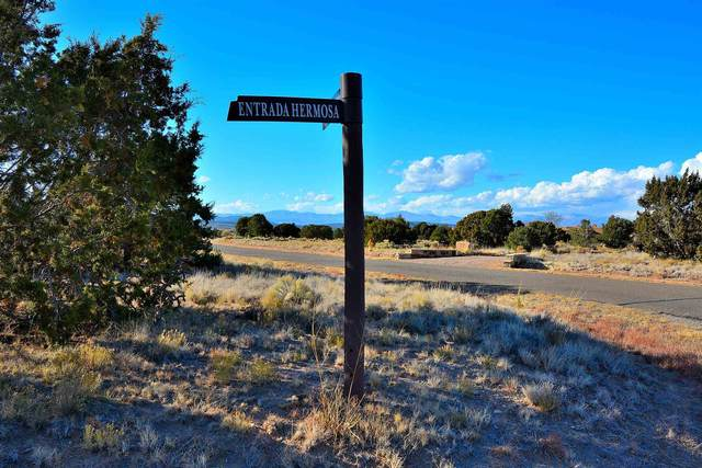 21 Entrada Hermosa Lot 846, Santa Fe, NM 87506 (MLS #202004985) :: Summit Group Real Estate Professionals